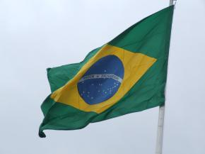 The Brazil B-school connection